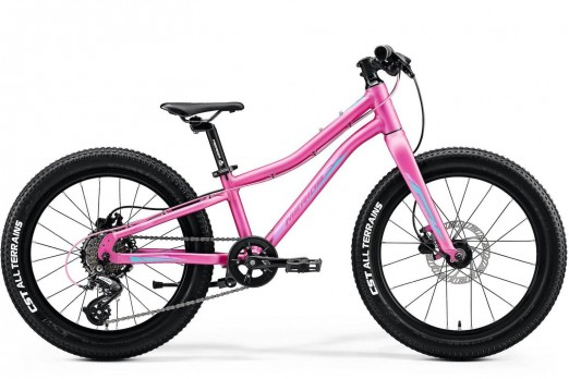 Merida Matts J20+ 2020 kids bikes